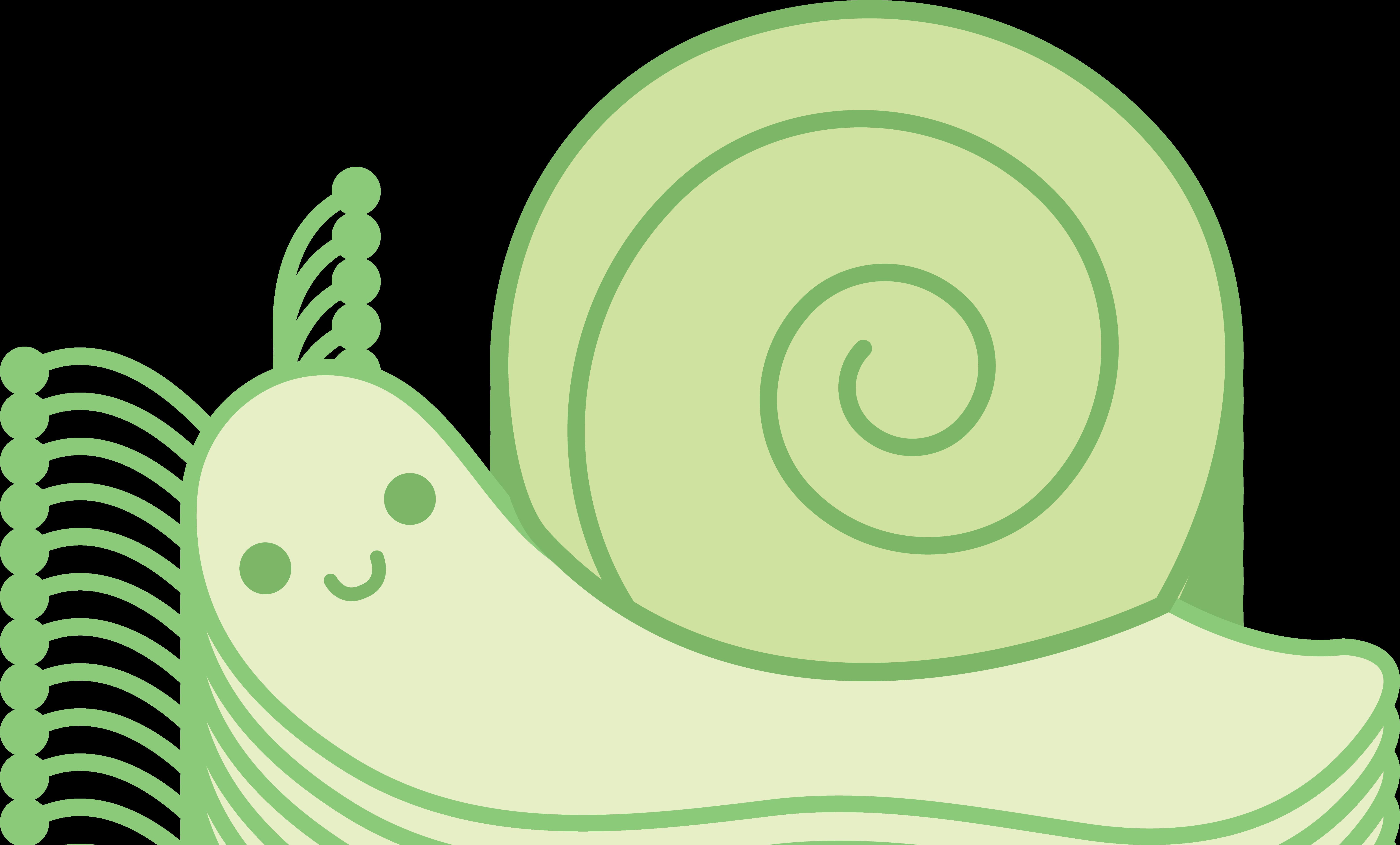 masker lebelage snail